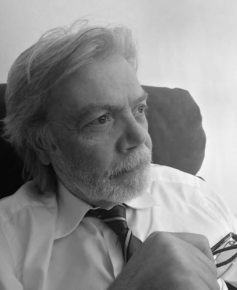 Vincenzo Brizzi consulente aziendale